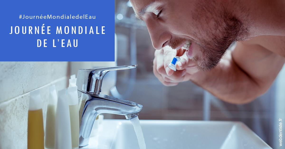 https://selarl-cabinet-dentaire-de-montchat.chirurgiens-dentistes.fr/Journée de l'eau 2