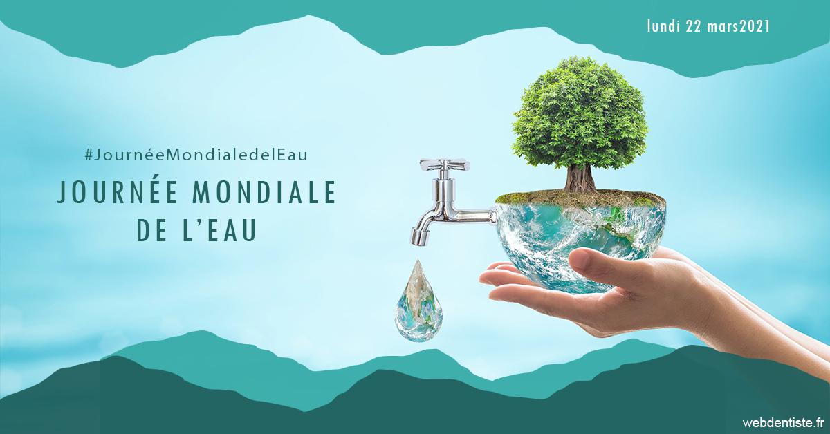 https://selarl-cabinet-dentaire-de-montchat.chirurgiens-dentistes.fr/Journée de l'eau 1